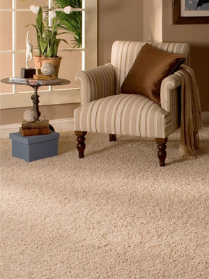 residential boise carpet cleaning